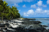 Rocky beach in Tau Island, Manuas, American Samoa, South Pacific by Danita Delimont