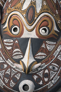 Melanesia, Papua New Guinea, Sepik River area, Murik Lakes, ... by Danita Delimont