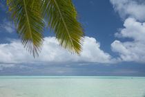 Cook Islands, Aitutaki by Danita Delimont