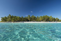 Palmerston Island, a classic atoll, discovered by Captain Co... von Danita Delimont