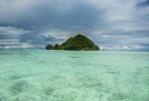 Little island in the Rock Islands, Palau, Central Pacific von Danita Delimont