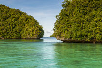 Little rock islet in the famous Rock Islands, Palau, Central Pacific by Danita Delimont