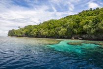 Rock Islands, Palau, Central Pacific by Danita Delimont