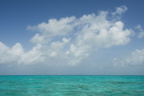 Caribbean Ocean von Danita Delimont