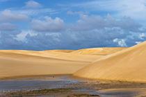 Sand dune in Lencois Maranheinses National Park, Maranhao St... von Danita Delimont