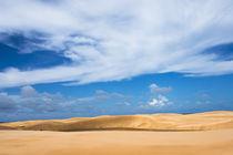 Sand dune in Lencois Maranheinses National Park, Maranhao St... by Danita Delimont
