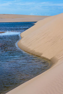 Sand dune and lagoon, Lencois Maranheinses National Park, Ma... by Danita Delimont