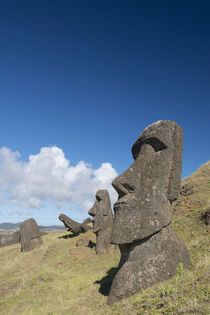 Chile, Easter Island aka Rapa Nui by Danita Delimont
