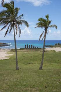 Easter Island aka Rapa Nui by Danita Delimont