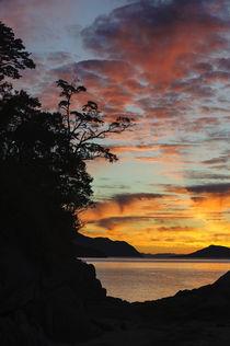 Chile, Aysen, Chonos Archipelago von Danita Delimont