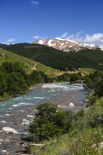 Patagonia, Chile, Aysen von Danita Delimont
