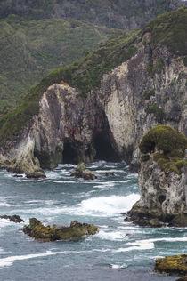 Chile, Region Los Lagos, Chiloe, Punihuil by Danita Delimont