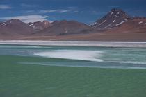 Green Lagoon in Andes Highlands by Danita Delimont