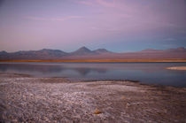 Cejar Pond at Sunset, Atacama Salt Lake by Danita Delimont