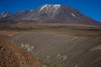 Quezala Canyon, Talabre, Chile von Danita Delimont