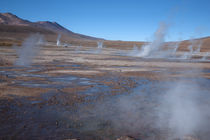 Late Morning at El Tatio von Danita Delimont