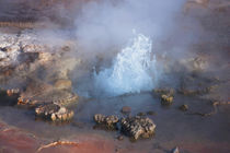 El Tatio Geyser Ground Water with Steam II by Danita Delimont