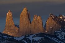 Torres del Paine by Danita Delimont