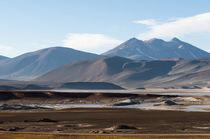 Salar de Talar, Atacama Desert, Chile. by Danita Delimont