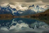 Cordillera del Paine by Danita Delimont