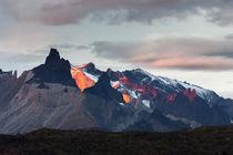 Cordillera del Paine von Danita Delimont
