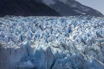 Glacier Grey von Danita Delimont