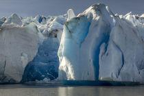 Glacier Grey by Danita Delimont