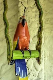 Islas del Rosario, Isla del Encanto, a tropical resort near ... by Danita Delimont