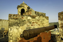 Castillo de San Felipe de Barajas was built during the 16th ... by Danita Delimont
