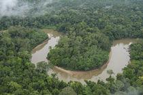 Tiputini River and Rainforest von Danita Delimont