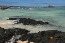 Beach Las Bachas von Danita Delimont