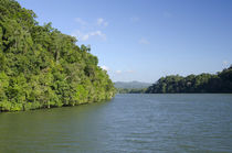 Guatemala, Rio Dulce National Park by Danita Delimont