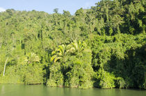 Guatemala, Rio Dulce National Park von Danita Delimont