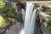 Kaieteur Falls, Guyana by Danita Delimont