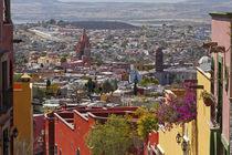 Mexico, San Miguel de Allende by Danita Delimont
