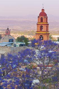 Mexico, San Miguel de Allende von Danita Delimont
