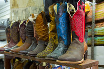 Cowboy boots, San Juan de Dios Market, Guadalajara, Jalisco, Mexico by Danita Delimont