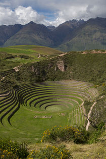 Circular Inca terraces of Moray, Cusco Region, Urubamba Prov... von Danita Delimont