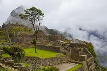 Machu Picchu, Cusco Region, Urubamba Province, Machupicchu D... by Danita Delimont