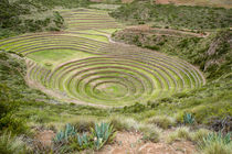 Peru, Moray by Danita Delimont