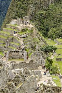 Machu Picchu, Aguas Calientes, Peru. von Danita Delimont