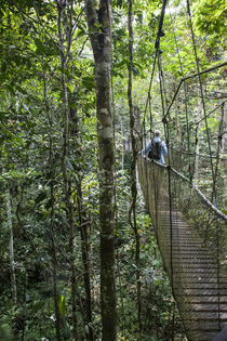 Suspension Bridge in Amazon Natural Park von Danita Delimont