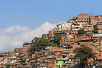 Barrios, slums of Caracas on the hillside, Caracas, Venezuela von Danita Delimont