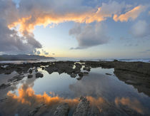 Calm water reflects the sunset clouds, Playa Santa Teresa, Costa Rica by Danita Delimont