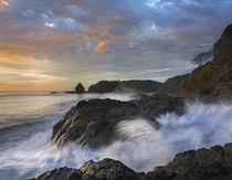 Ostional Beach, Costa Rica von Danita Delimont