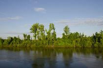 USA, Alabama, Tombigbee River by Danita Delimont