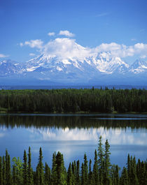 USA, Alaska, Willow lake and Mt Wrangell in Wrangell, St by Danita Delimont