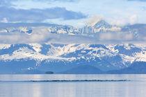 USA, Alaska, Glacier Bay National Park by Danita Delimont
