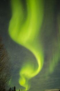 USA, Alaska von Danita Delimont