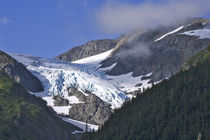 USA, Alaska, Chugach National Forest by Danita Delimont
